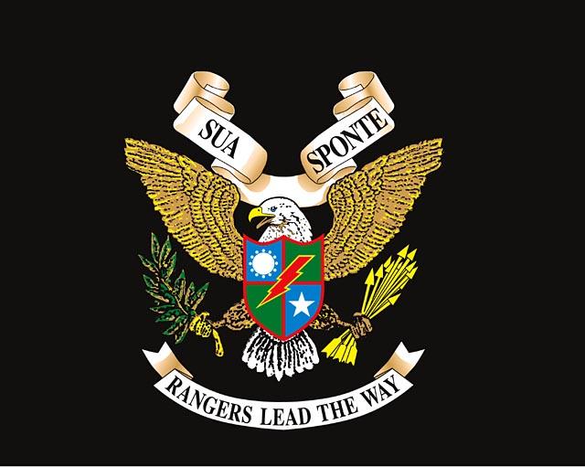 Artworks Graphics Illustration Ranger Flag